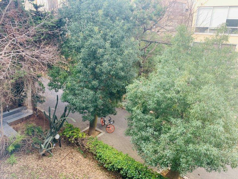 הנוף מהדירה בפנקס